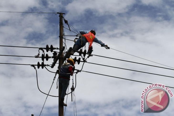 PLN ready to build 21 power plants in Timika