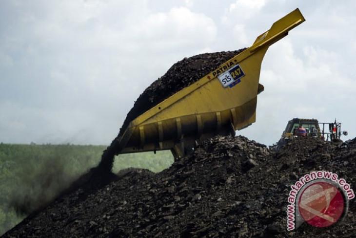 Tumpahan batu bara dinyatakan tak cemari laut