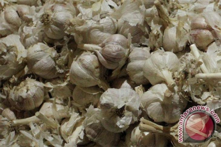 Pemerintah berupaya turunkan harga bawang putih