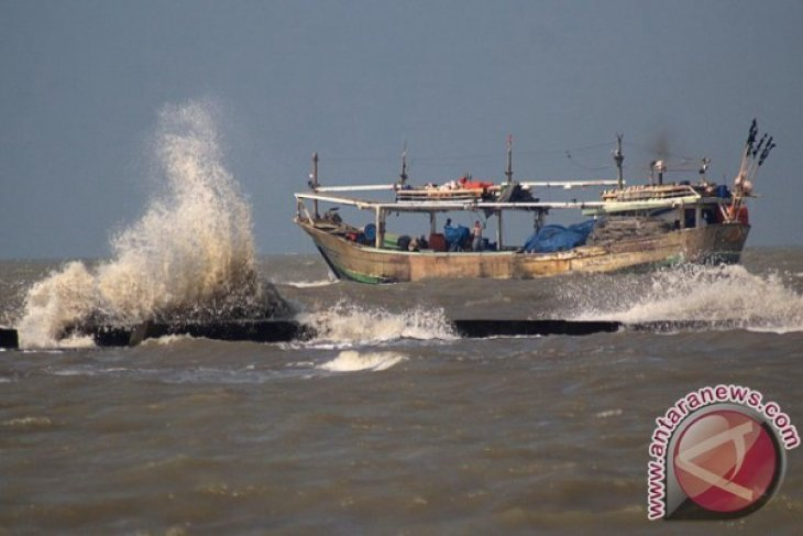 Sawu Sea to be developed into whale attraction tourism