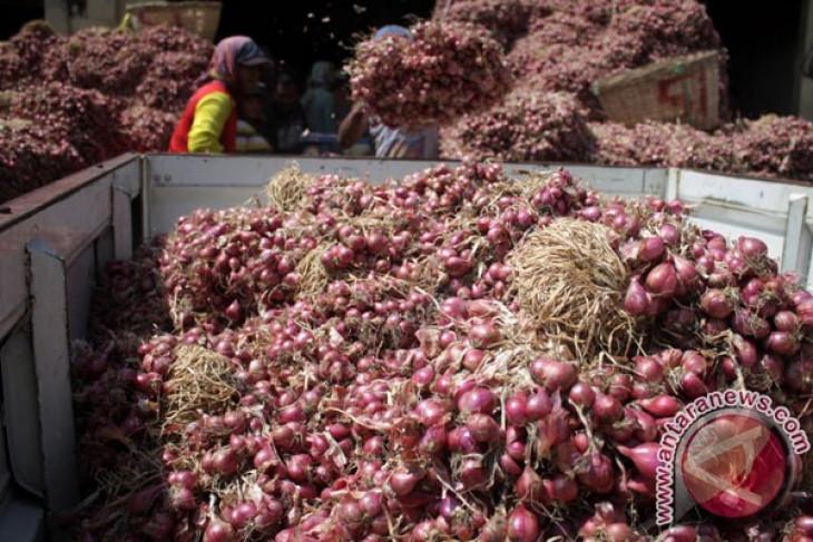 Harga bawang merah turun jadi Rp26 ribu