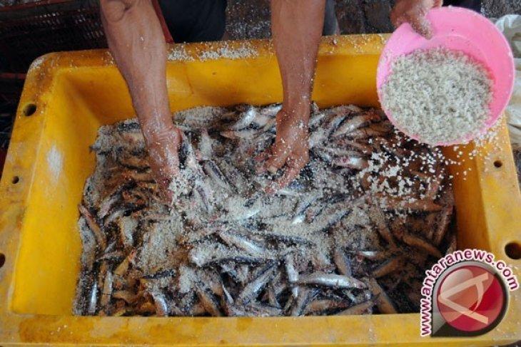 UMKM Ikan Asin di Kotabaru Terancam Tutup