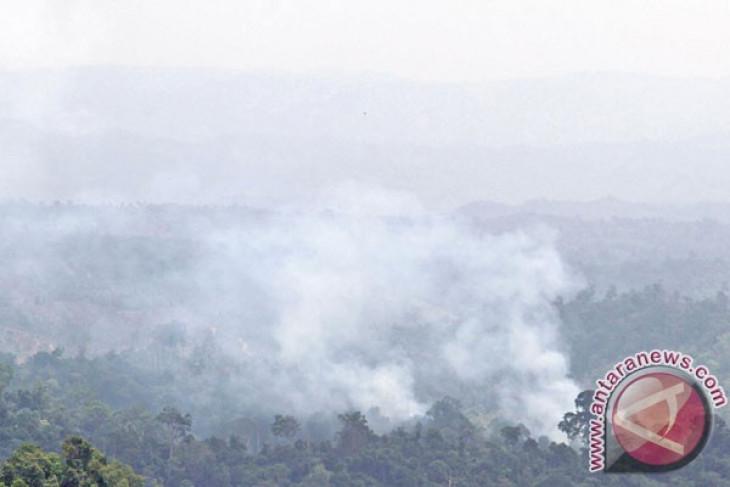 Deteksi satelit, di Aceh muncul 10 titik panas