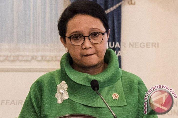 Indonesia-Norwegia pimpin pertemuan kerja sama untuk perdamaian