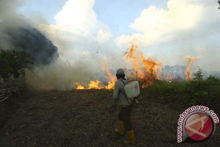 BMKG: beberapa daerah di sumbar berpotensi karhutla
