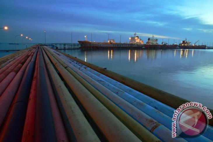 Italy backs Indonesia`s palm oil in EU