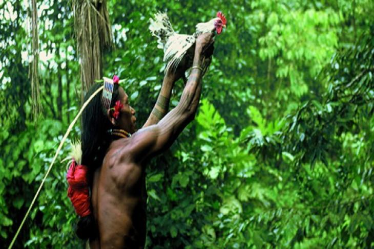 Menjaga hutan dan budaya masyarakat adat Mentawai