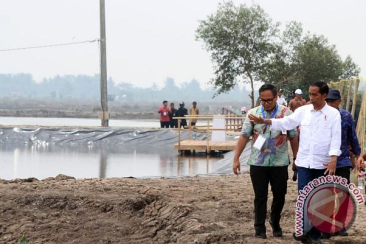 Lampung ditargetkan jadi lumbung udang nasional