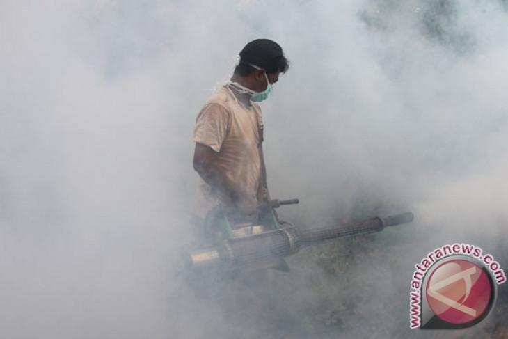 Demam Berdarah Dengue dilaporkan di Fiji utara