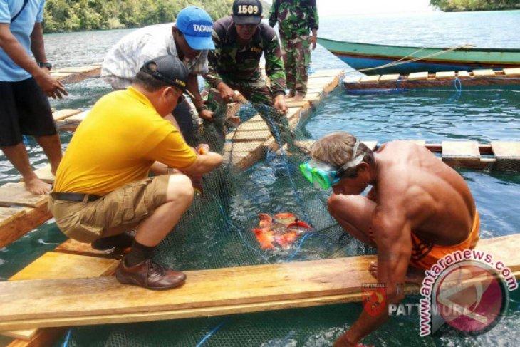 Humas Polda Maluku Huruf-huruf di tubuh ikan bukan hal luar biasa
