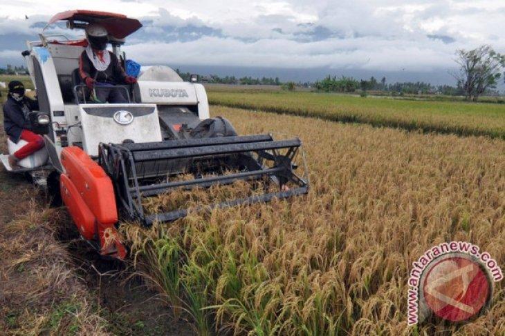 Nilai tukar petani Kaltim naik 0,74 persen