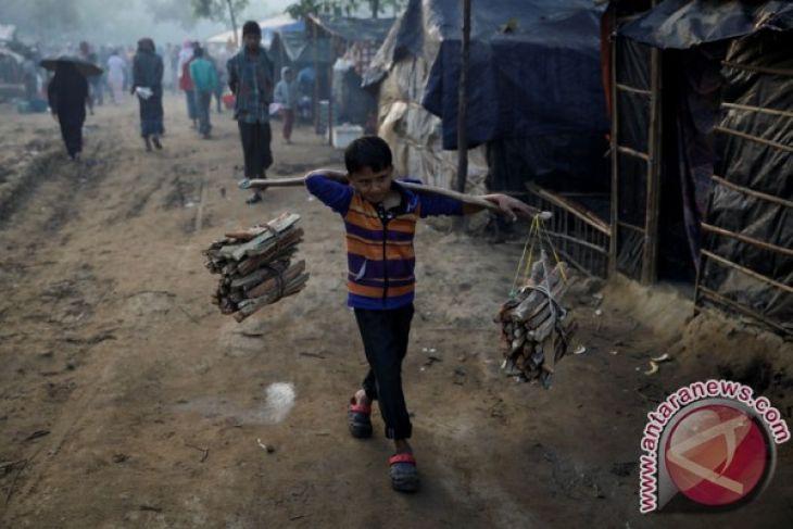 Gajah injak dua orang hingga tewas di Kamp Rohingya, Bangladesh