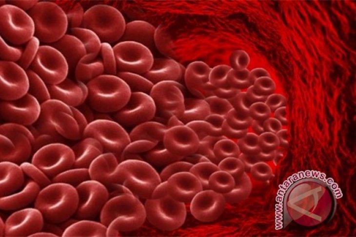 Peneliti IPB: Pengaruh Suplementasi Besi terhadap Hemoglobin Remaja Putri
