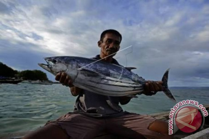 Pemkab diminta fasilitasi pendirian koperasi nelayan