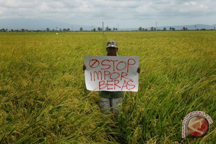 Mataram keberatan rencana impor beras