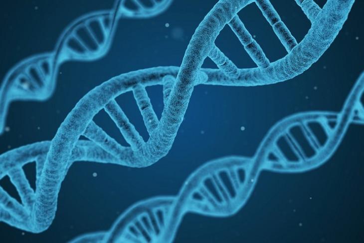Korea Selatan habiskan miliaran won untuk kembangkan bioteknologi