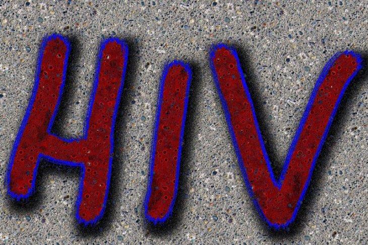 Pasangan sejenis berpeluang 28 kali terkena HIV