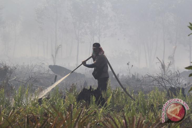 Dumai siaga kebakaran hutan-lahan