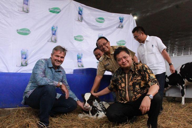 Menperin: pengembangan peternakan sapi kurangi impor