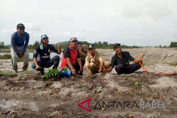 PT Timah unit Toboali akan lakukan reklamasi lahan bekas tambang