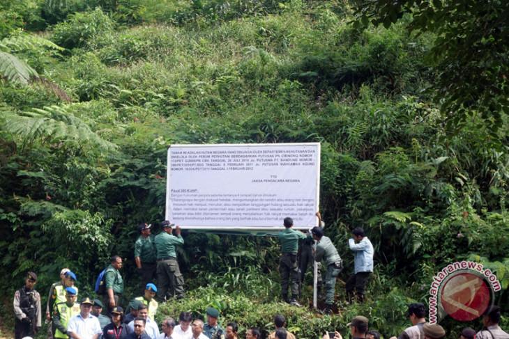 KLHK selidiki perambahan hutan lindung Bukit Betabuh Riau