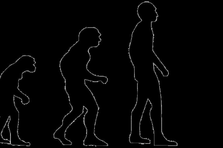 Homo sapiens awal lebih canggih dari dugaan