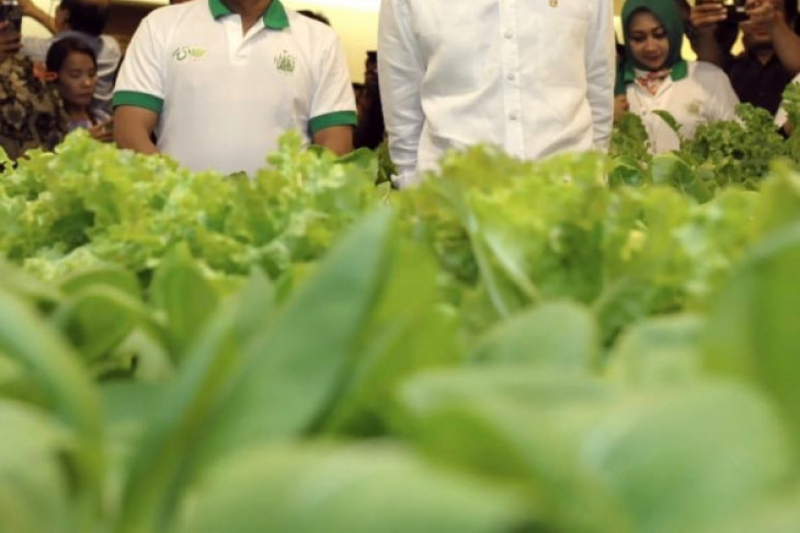 Pengamat: Moeldoko bisa dukung Jokowi wujudkan stabilitas