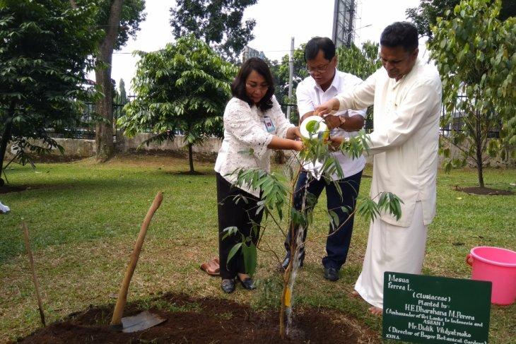 Kebun raya tambah koleksi dari Sri Lanka