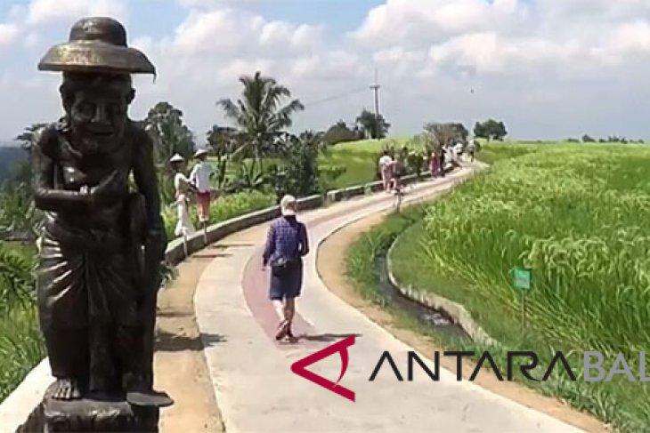 Tabanan Tambah Wahana Tracking Wisata Hamparan Sawah