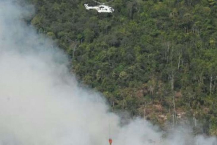 All-out efforts to extinguish wildfires on Sumatra, Kalimantan Islands