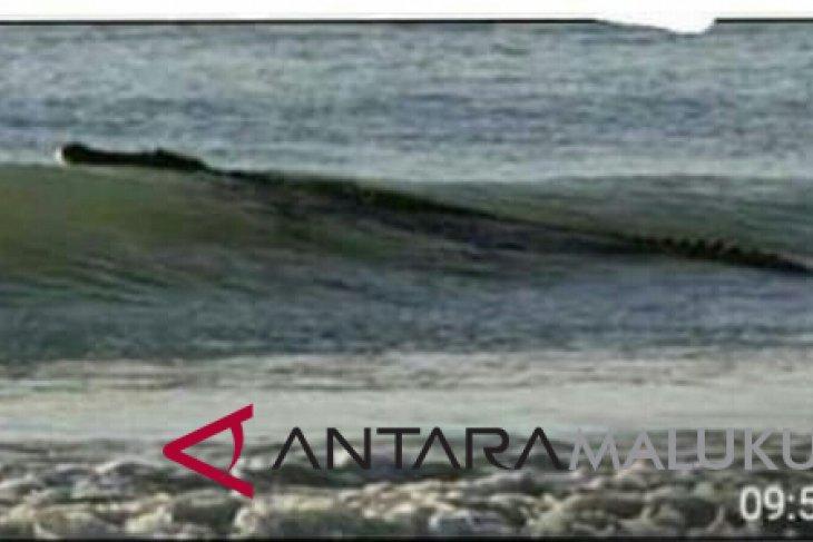 Pemkot programkan reklamasi pantai Ternate Utara