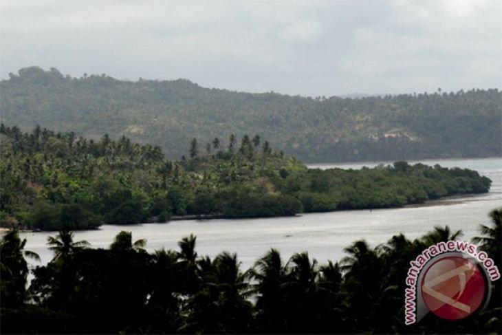 Bupati Tanimbar hentikan izin operasional Hutan Kemasyarakatan