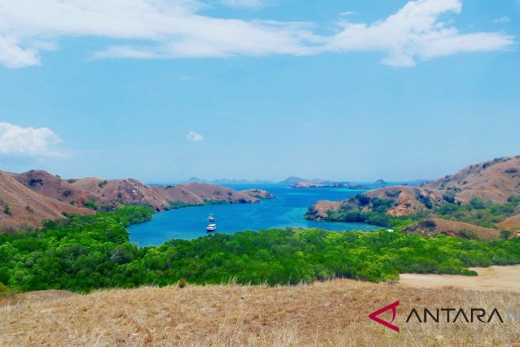 Komodo Island to be closed next year: NTT