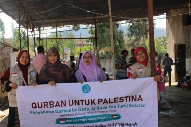 Adara Relief dan Salimah salurkan kurban di Pengungsian Palestina