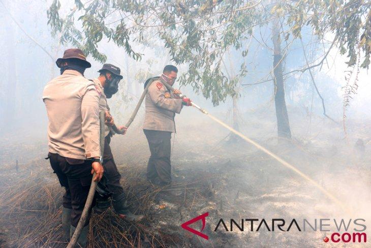 1.500 hektare lahan di Kalsel terbakar selama 2018