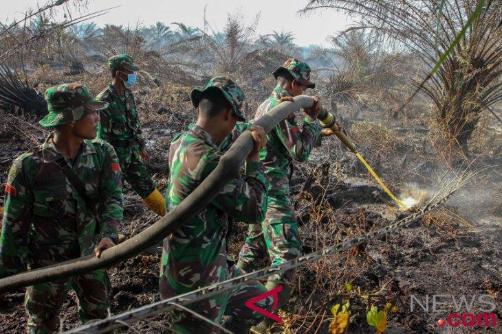 Pembakar lahan di Kotawaringin Timur ditangkap