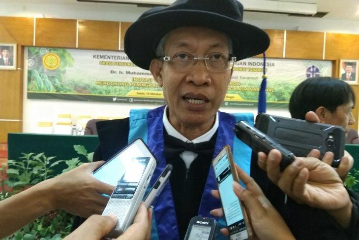 Inovasi Balitbangtan tingkatkan produksi lada nasional