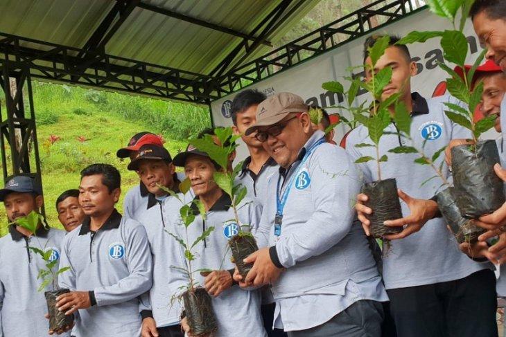 BI Kediri Tanam 25 Ribu Bibit Kopi Arabika di Lereng Gunung Wilis