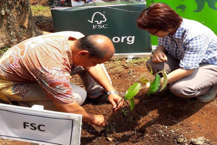 FSC memperingati Hari Pohon Sedunia