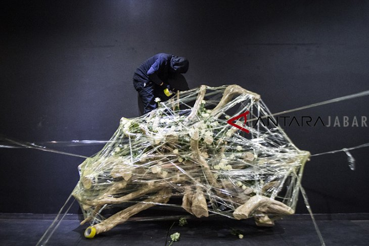 Radix seni performance
