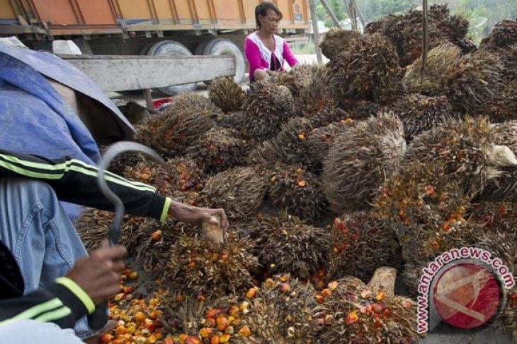 Indonesia desak UE stop pelabelan produk