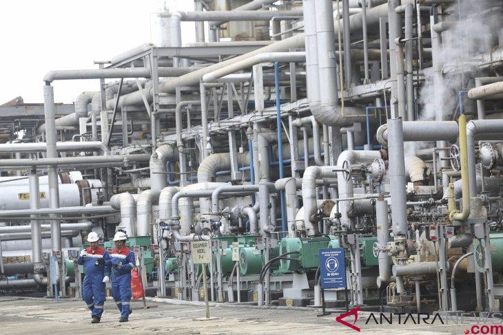 Dua pekerja memeriksa proses pengolahan Crude Palm Oil (CPO) menjadi Green Gasoline (bahan bakar bensin ramah lingkungan) dan Green LPG secara co-processing di kilang PT Pertamina (persero) Refinery Unit (RU) III Sungai Gerong, Banyuasin, Sumatera Selatan, Jumat (21/12/2018). Foto: ANTARA FOTO/Nova Wahyudi