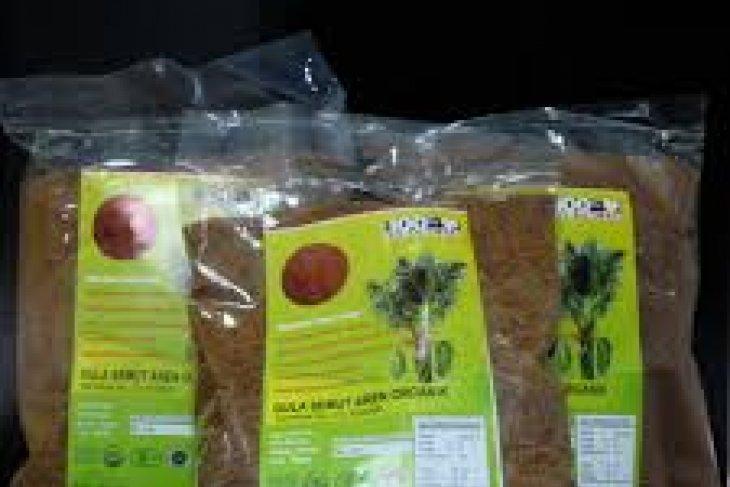 Kelompok tani Gorontalo ekspor gula semut ke Belanda