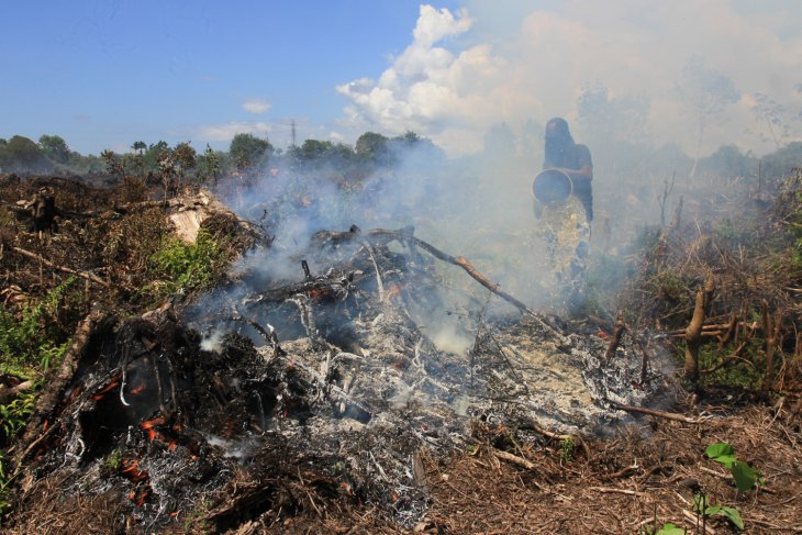 Joint team has put out 80 percent of peatland fires in Nagan Raya