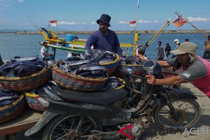 Pedagang ikan direlokasi dari PPS Kutaraja Banda Aceh
