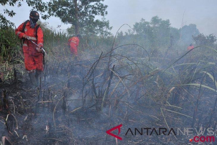 Upaya pemadaman kebakaran lahan sumsel 2