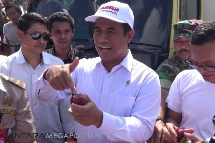 Mentan lepas ekspor manggis Sukabumi ke Cina
