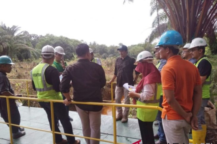 Laskar Hijau tanam 1.000 pohon pelawan di waduk Unmet Muntok