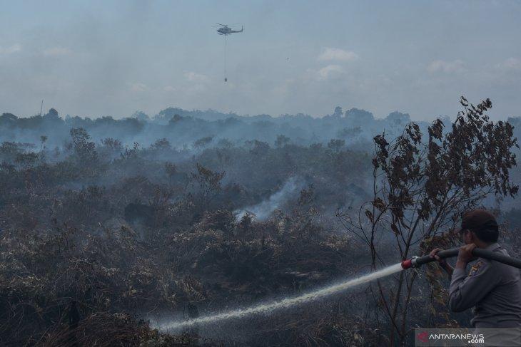 Sumatera-Kalimantan waspada peningkatan kebakaran lahan pada awal kemarau