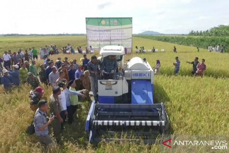 Distan-BI cari lokasi buat kawasan percontohan pertanian modern